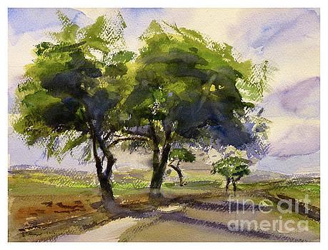 landscape  Burmarrad by Godwin Cassar