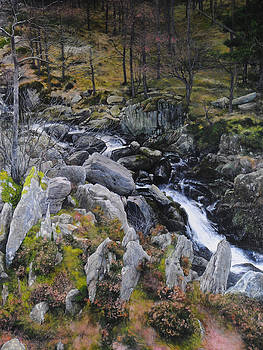 Harry Robertson - Landscape in Snowdonia