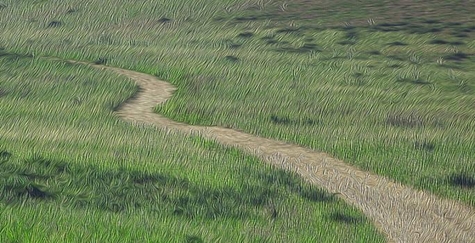 Landscape by Jessica Nguyen