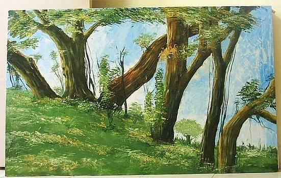 Landscape by Venkat Meruvu