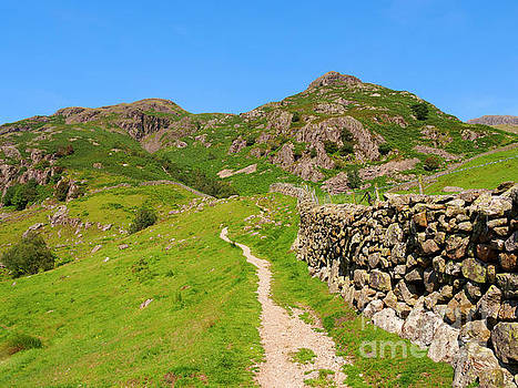Langdale Fell in Great Langdale Lake District by Louise Heusinkveld