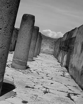 Michael Peychich - Las Ruinas Mayas de Mitla