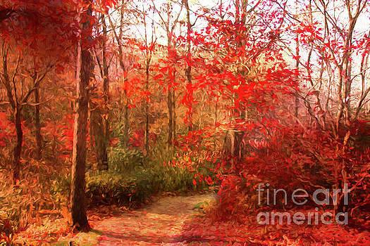 Last color of Fall by Geraldine DeBoer