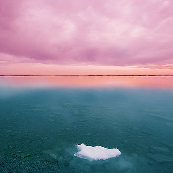 Last Ice by Marlene Ford