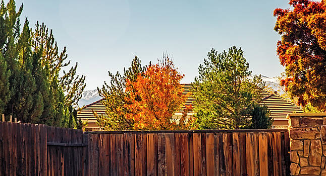 Last Of AutumnFirst Of Winter by Nancy Marie Ricketts