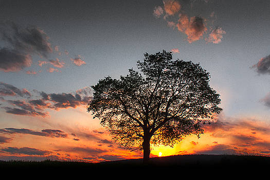 Lasting Hope by Everett Houser