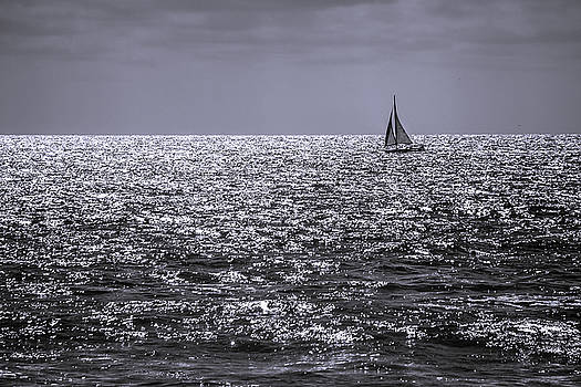 Late Afternoon Sailing by Randy Bayne