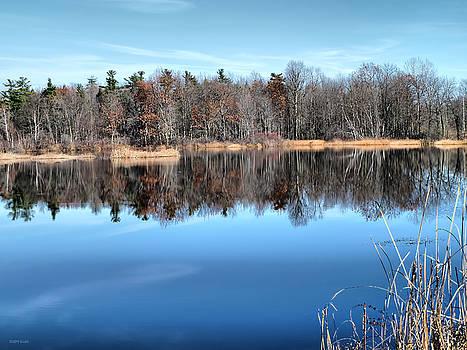 Deborah Benoit - Late Autumn Reflections