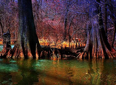 Late Evening in Reelfoot by Julie Dant