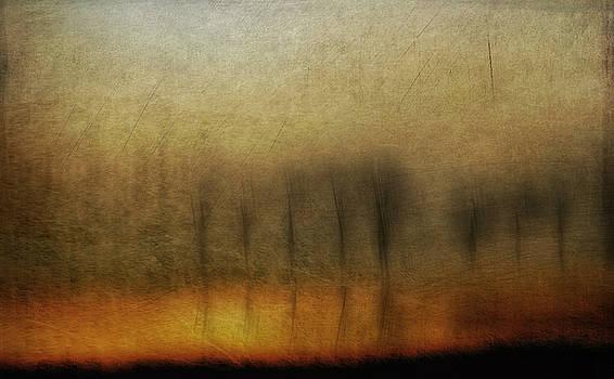 Late In The Afternoon par Annemiek Groenhout