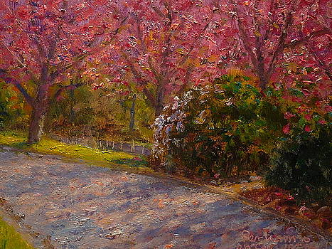 Terry Perham - Late Spring Blossom