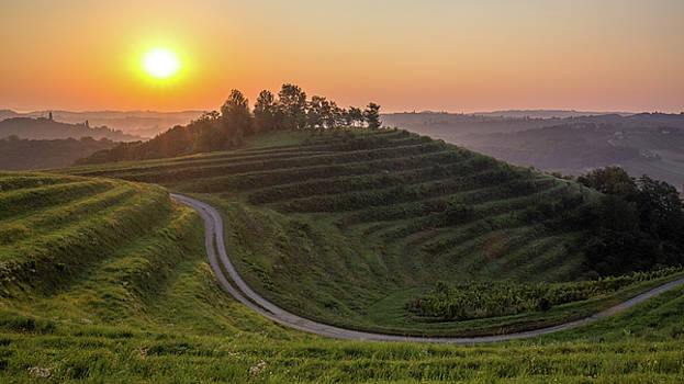 Late summer morning by Davorin Mance
