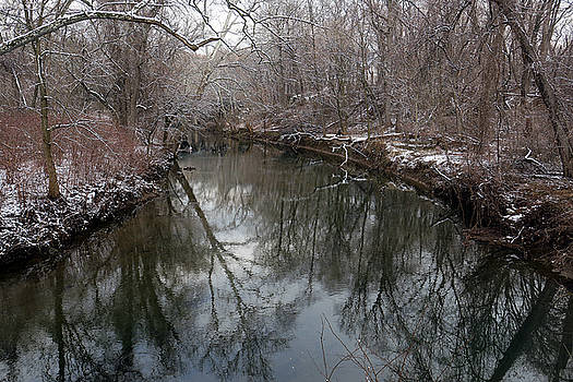 Late Winter in Philly by Dorin Adrian Berbier