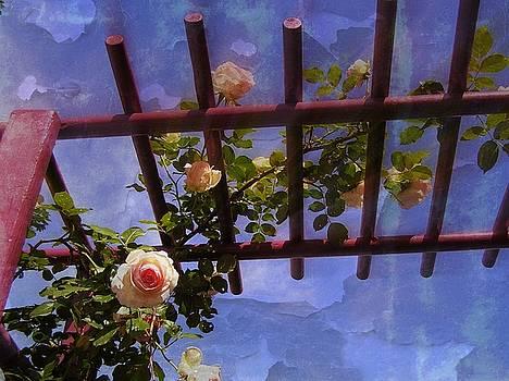 Laura's Rose Trellis 2 by Jen White