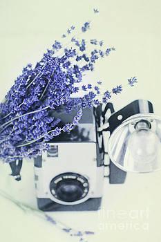 Lavender and Kodak Brownie Camera by Stephanie Frey
