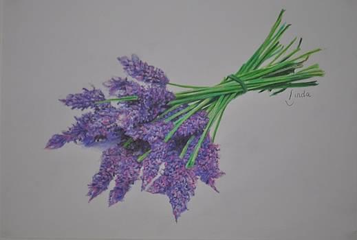 Lavender by Linda Ferreira