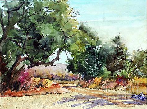 LBJ Grasslands TX by Ron Stephens