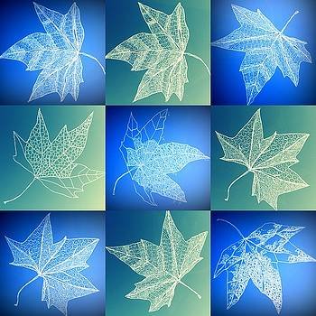 Leaf collage in turquoise and aqua by Cathy Jacobs