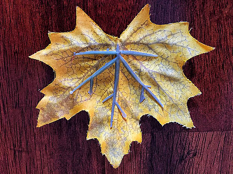 Leaf in Yellow by Mary McGrath