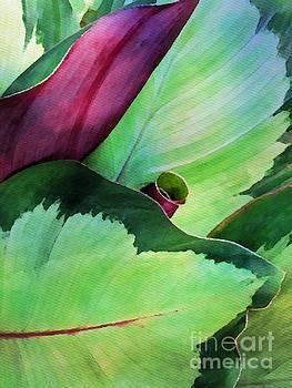 Leaf Unfurled by Jacklyn Duryea Fraizer