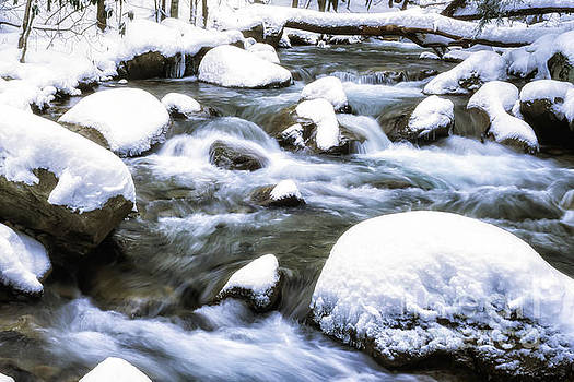 Leatherwood Creek and Snow by Thomas R Fletcher