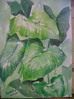Leaves by Anoop S