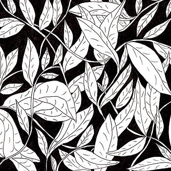 Leaves by Lou Belcher