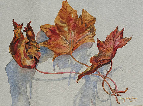 Leaves of Fall by Mary Haley-Rocks