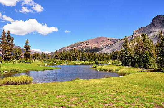 Lee Vining Creek - Yosemite National Park - California by Bruce Friedman