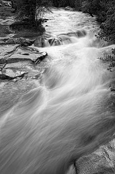 James BO  Insogna - Left Hand Creek Portrait in Black and White