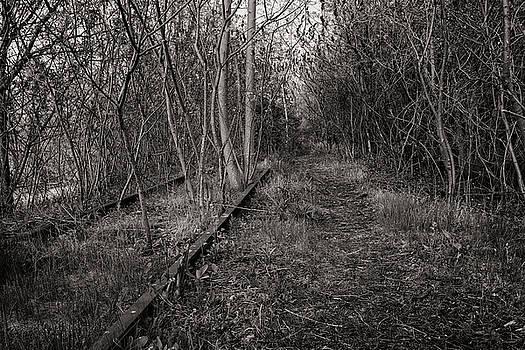 Left to Rust by CJ Schmit