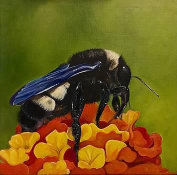 Legs adorned with pollen by Gwendolyn Frazier