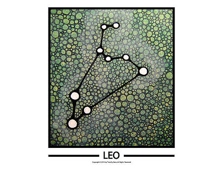 Leo by Timothy Benz