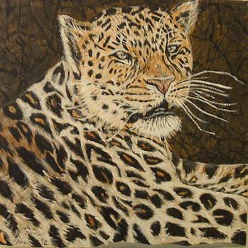 Leopard fourth of four by Cynthia Farmer