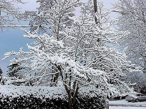 Let It Snow Let It Snow Let It Snow by Jay Milo