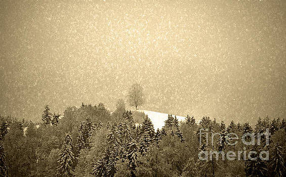Susanne Van Hulst - Let it snow - Winter in switzerland