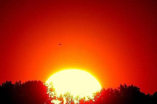 Let The Sun Through by Robert Martin