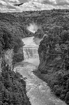 Steve Harrington - Letchworth State Park 5 bw