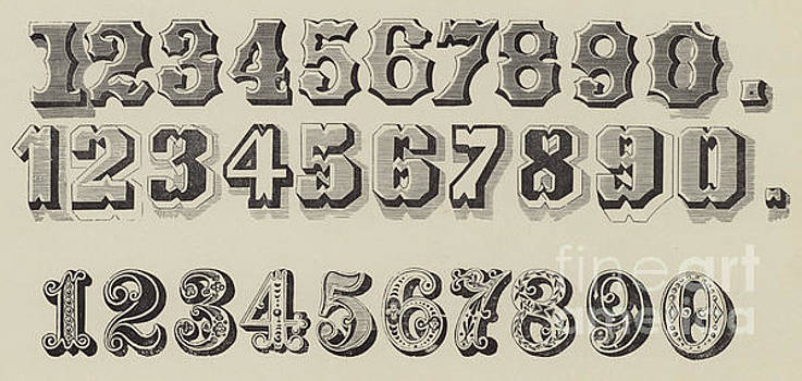 Letters and Numbers by English School