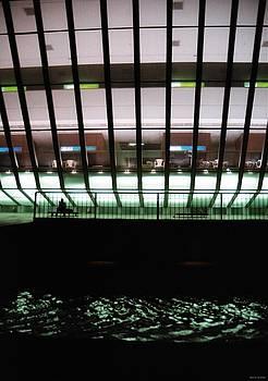 Library At Night by David Cardona