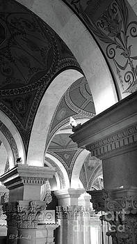 Library of Congress 3 black and white by E B Schmidt