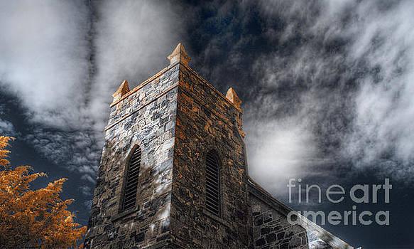 Lichen by Russ Brown