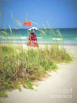 Lifeguard Georgia by Linda Olsen