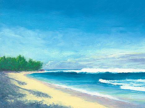 Life's a Beach, Turtle Bay, Oahu by Elaine Farmer