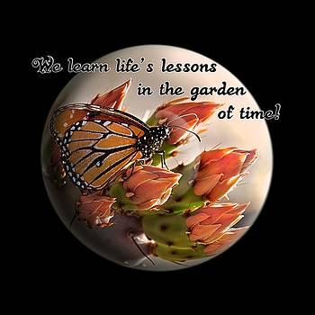 Life's Garden by Phyllis Denton