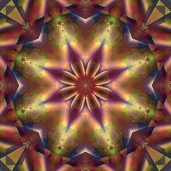 Star Light by Lori Grimmett