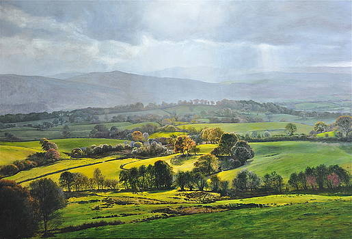 Harry Robertson - Light in the Valley at Rhug.