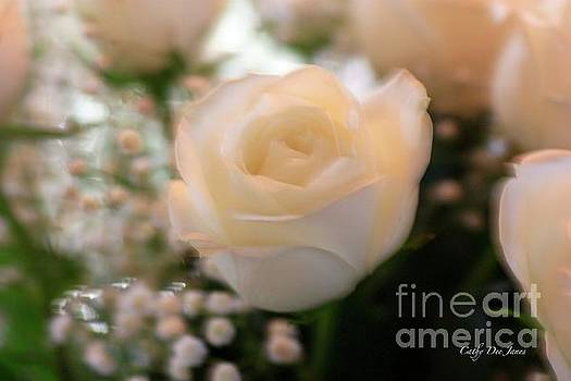 Winter Rose by Cathy Dee Janes