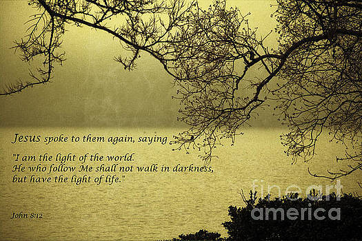 Light of the World by Ella Kaye Dickey