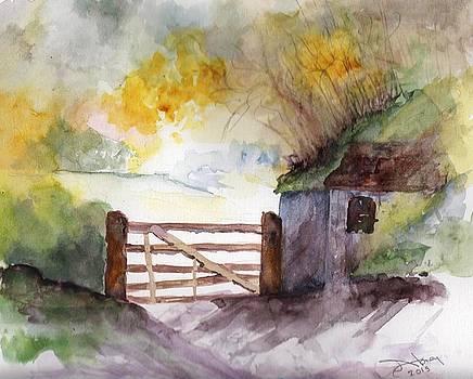 Light on the Pasture by Sandi Stonebraker